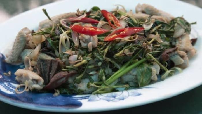 kuliner ular di vietnam