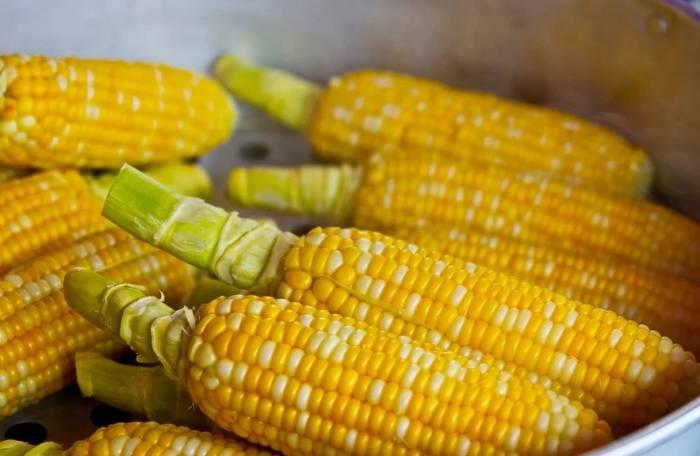 Makan Karbohidrat Tapi Enggak Bikin Gemuk Kok Bisa Indozone Id