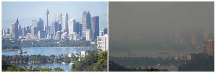 Foto Kabut Asap Kebakaran Hutan Selimuti Sydney Indozone Id
