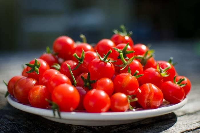 tomat cerita bagi penderita diabetes