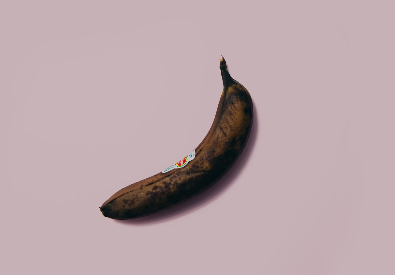Ilustrasi penis terkena sifilis