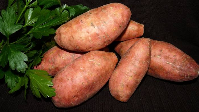 makanan untuk penderita diabetes ubi jalar