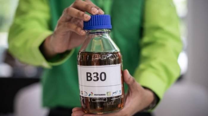 b30, biodisel b30, bahan bakar terbarukan,