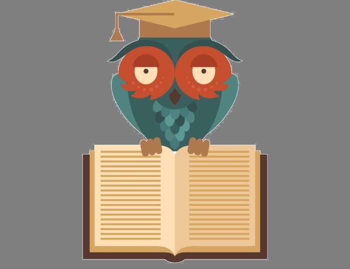Ilustrasi burung hantu sebagai simbol kebijaksanaan.