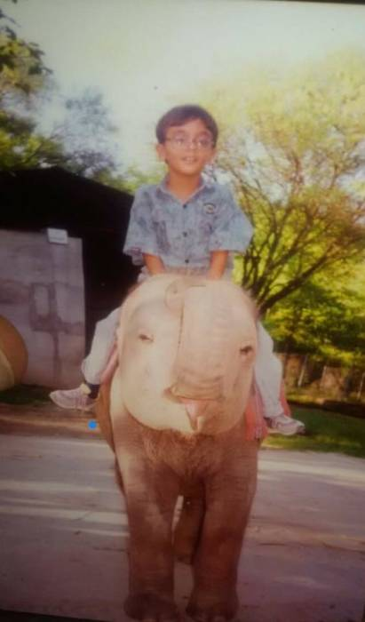Kaavan menjadi penghuni kebun binatang sejak kecil