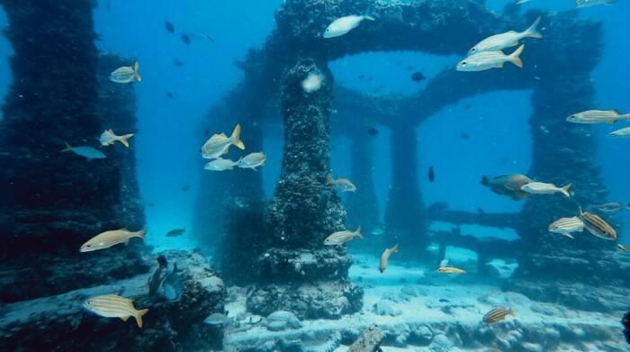 Kuburan bawah laut, Neptune Memorial Reef.